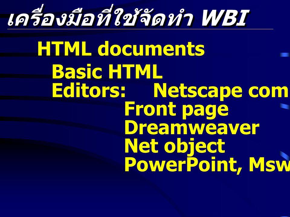 เครื่องมือที่ใช้จัดทำ WBI