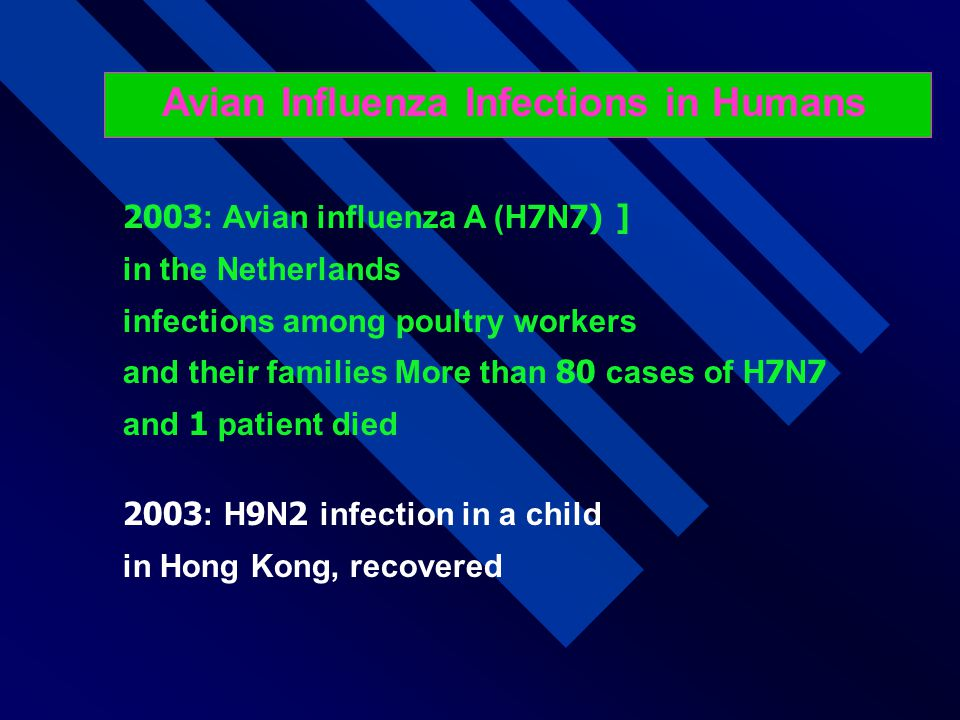 Avian Influenza Infections in Humans