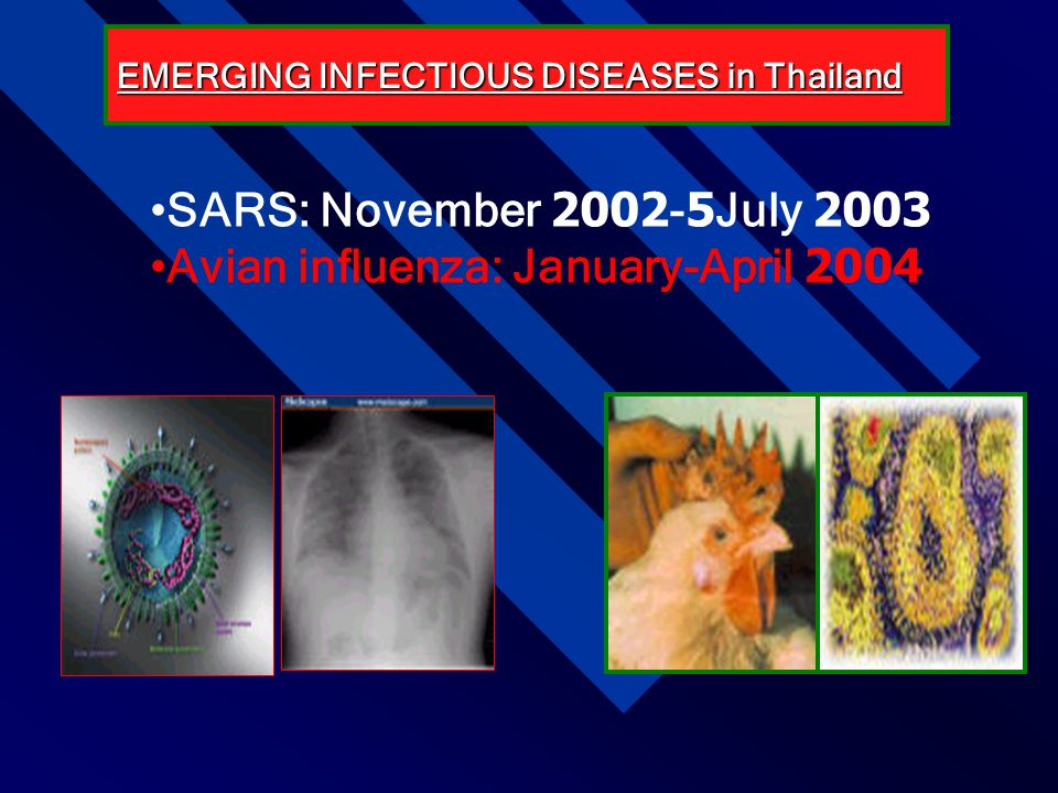 Avian influenza: January-April 2004