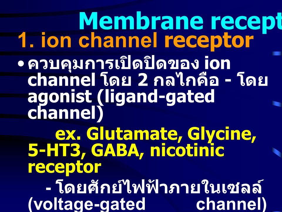 Membrane receptor 1. ion channel receptor