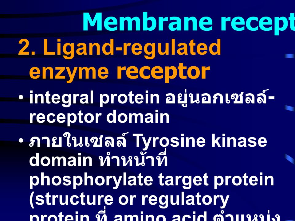 Membrane receptor 2. Ligand-regulated enzyme receptor