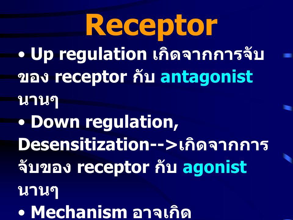 Receptor Up regulation เกิดจากการจับของ receptor กับ antagonist นานๆ