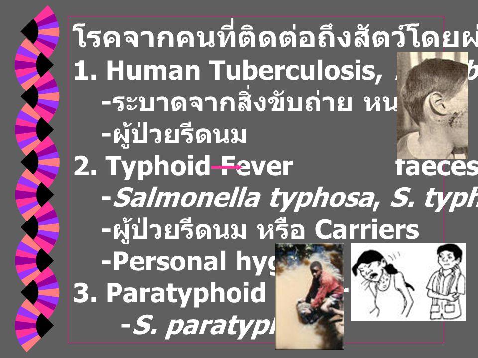 โรคจากคนที่ติดต่อถึงสัตว์โดยผ่านทางน้ำนม