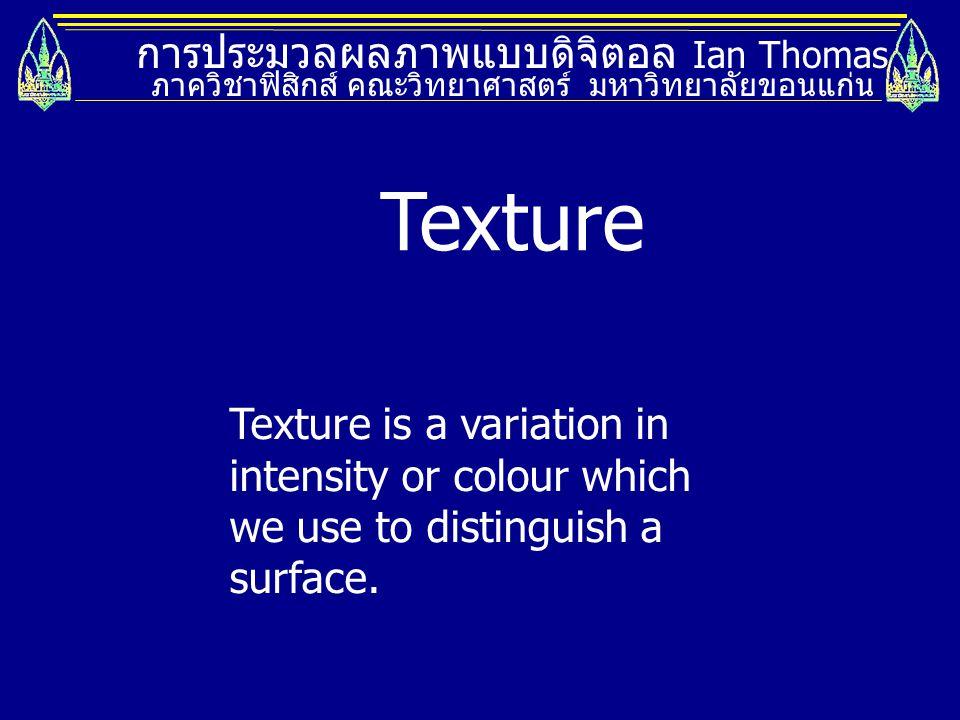 Texture การประมวลผลภาพแบบดิจิตอล Ian Thomas