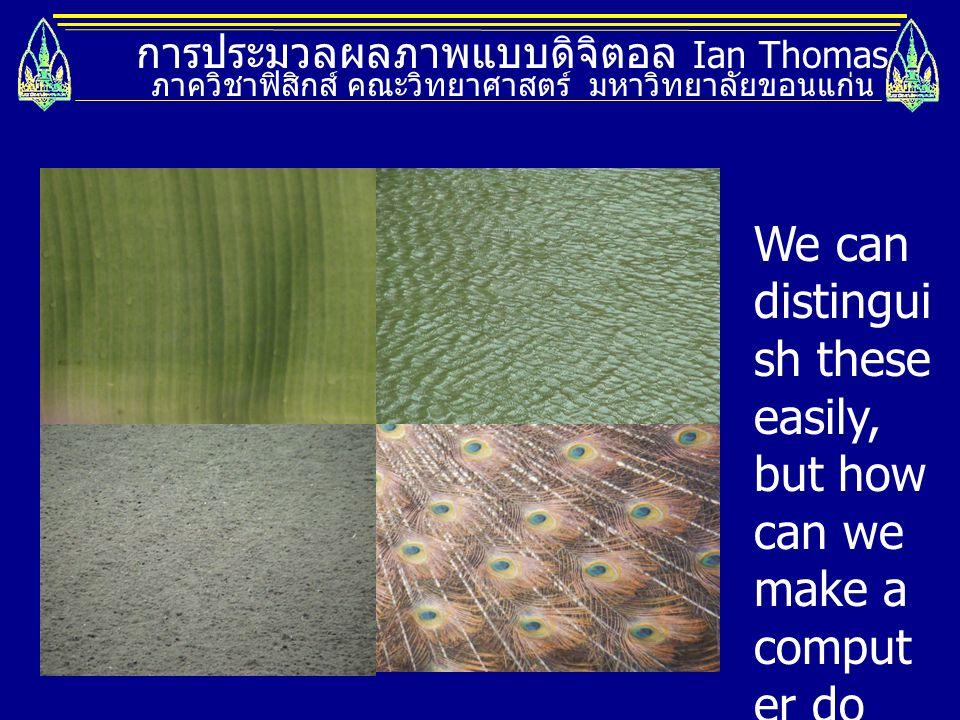 การประมวลผลภาพแบบดิจิตอล Ian Thomas