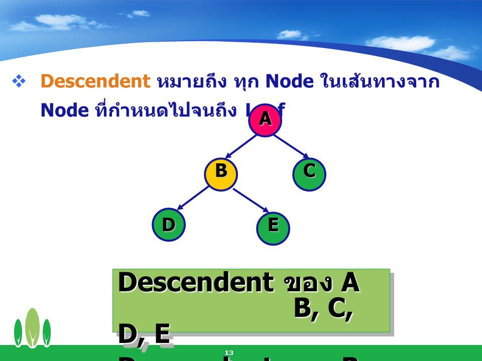 Descendent ของ A B, C, D, E Descendent ของ B D,E