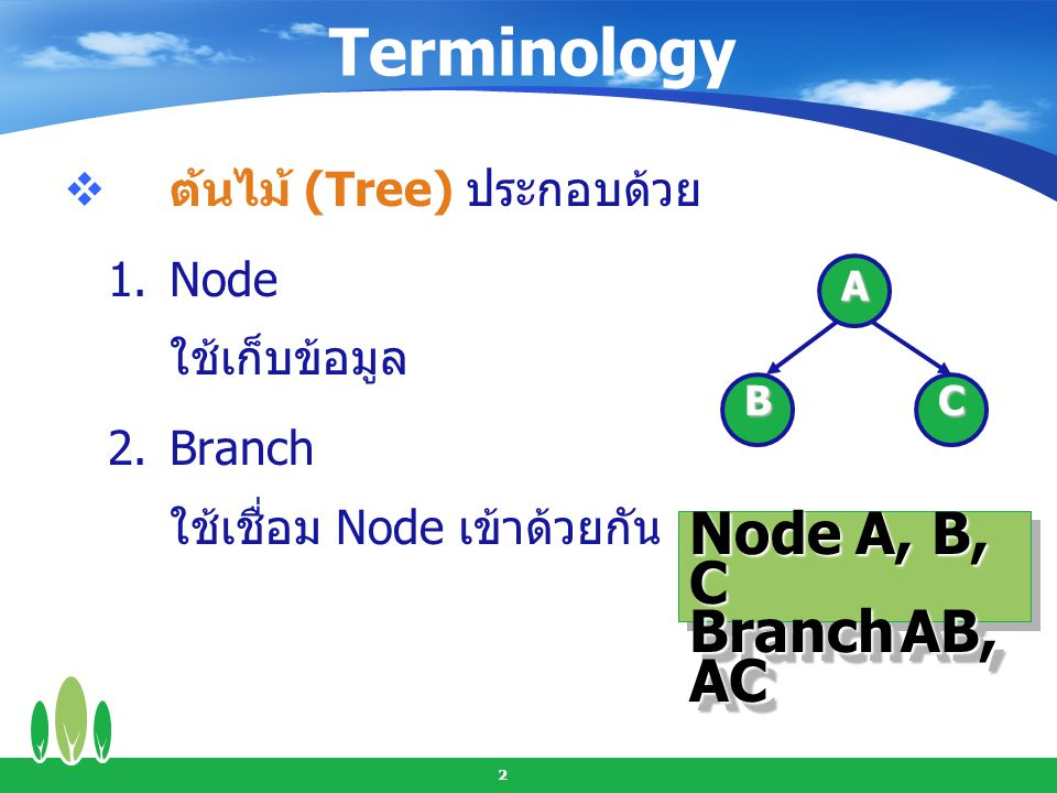 Terminology Node A, B, C Branch AB, AC ต้นไม้ (Tree) ประกอบด้วย