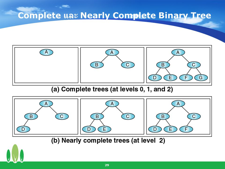 Complete และ Nearly Complete Binary Tree