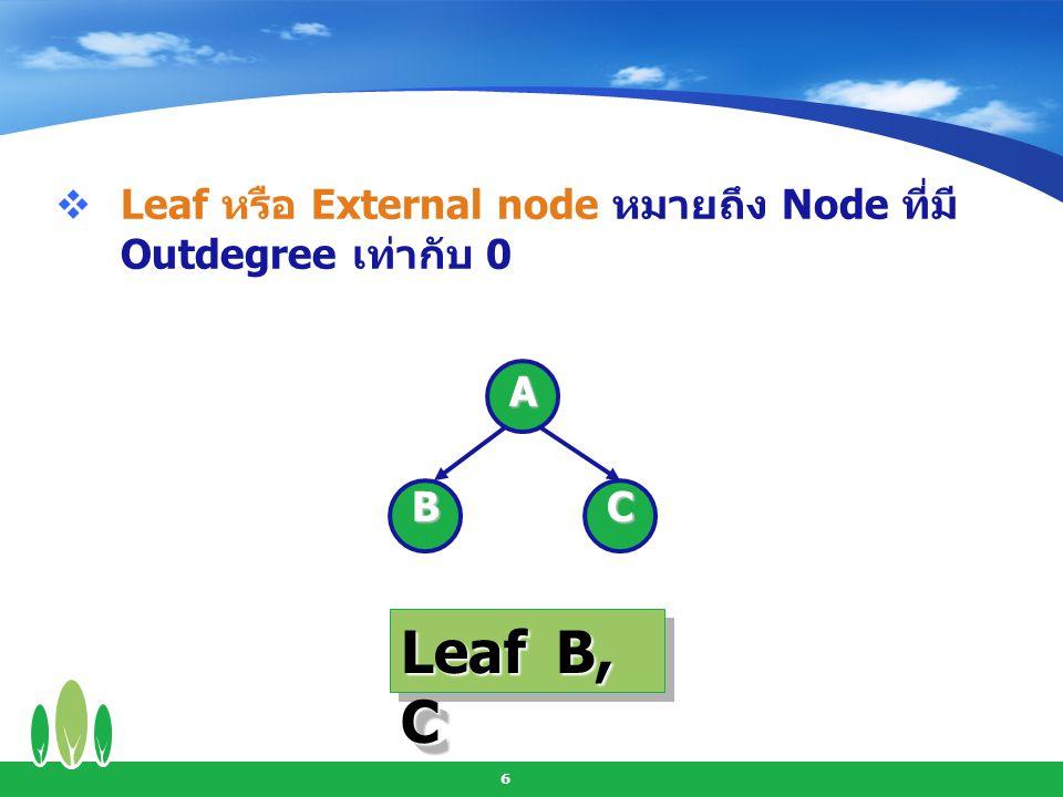 Leaf หรือ External node หมายถึง Node ที่มี Outdegree เท่ากับ 0