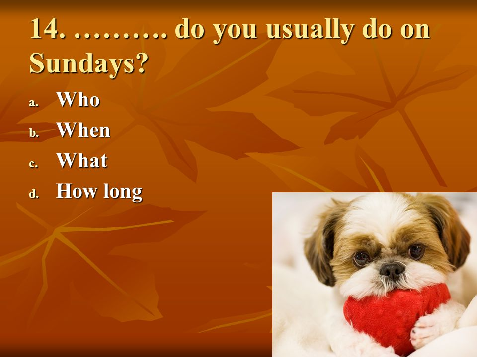 14. ………. do you usually do on Sundays