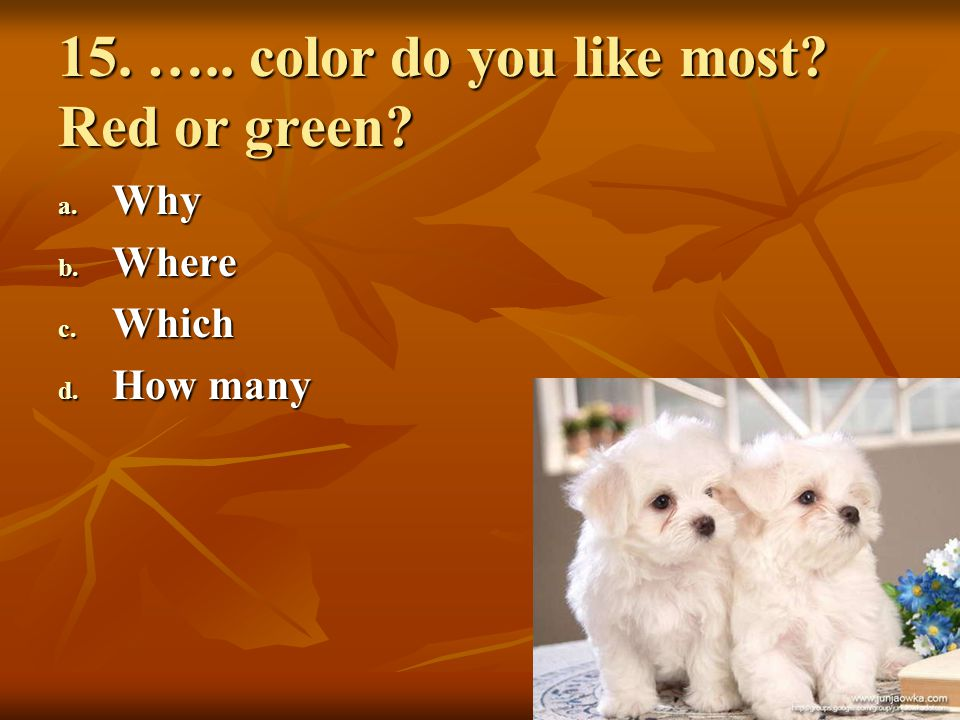 15. ….. color do you like most Red or green
