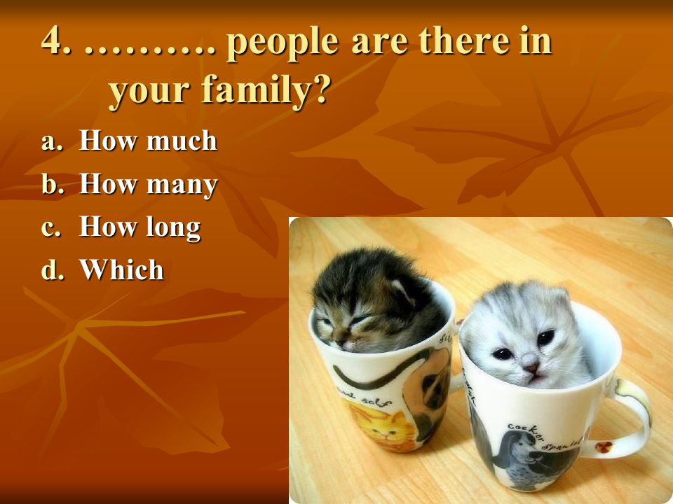 4. ………. people are there in your family