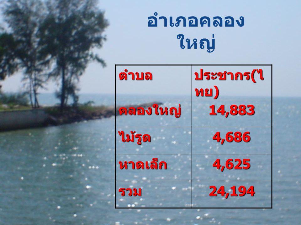 อำเภอคลองใหญ่ ตำบล ประชากร(ไทย) คลองใหญ่ 14,883 ไม้รูด 4,686 หาดเล็ก