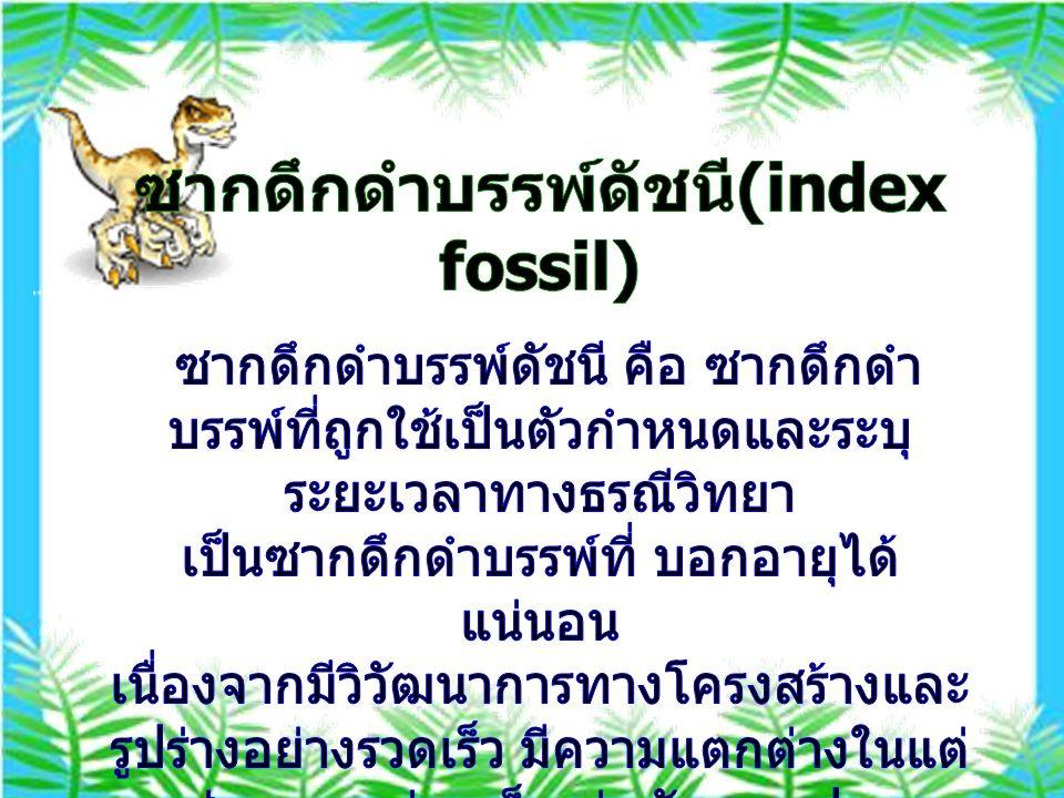 ซากดึกดำบรรพ์ดัชนี(index fossil)