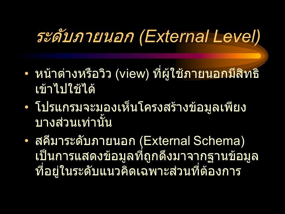 ระดับภายนอก (External Level)