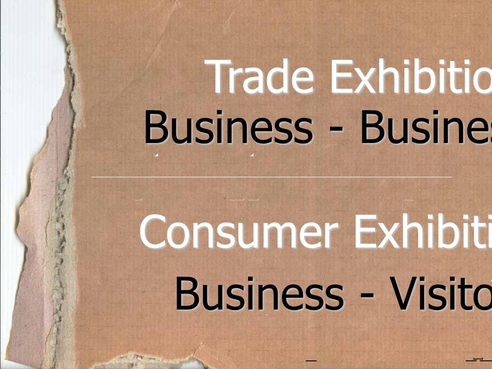 Trade Exhibition Business - Business Consumer Exhibition Business - Visitors