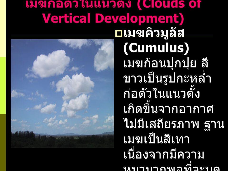 เมฆก่อตัวในแนวตั้ง (Clouds of Vertical Development)