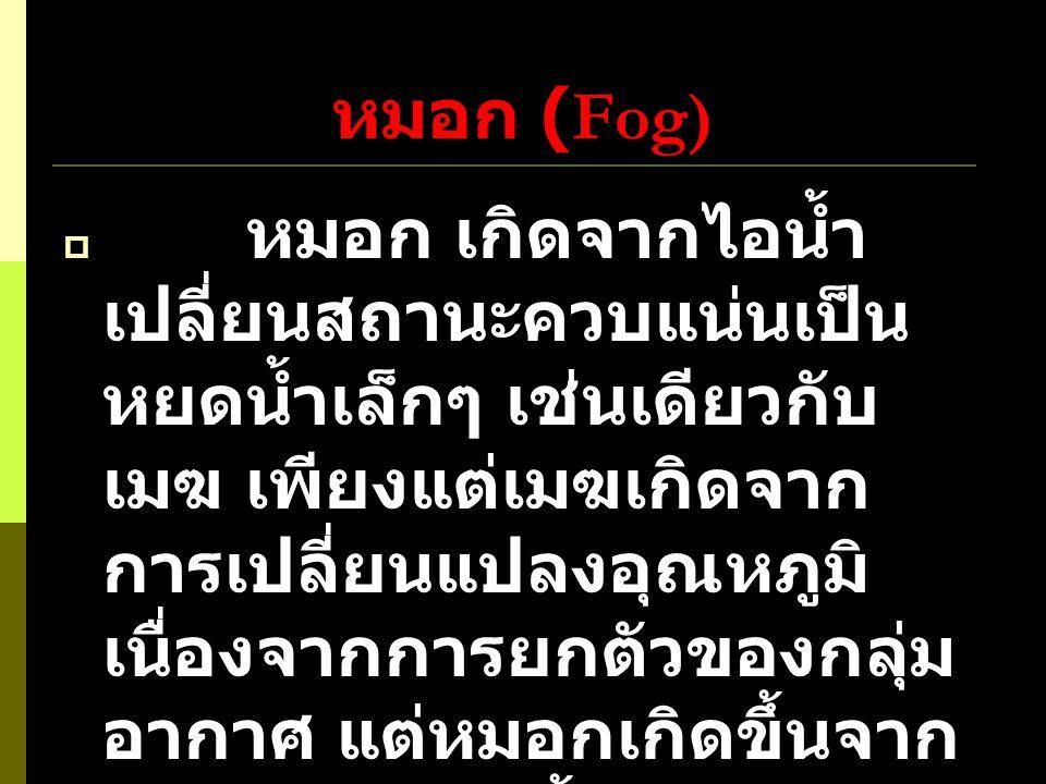 หมอก (Fog)
