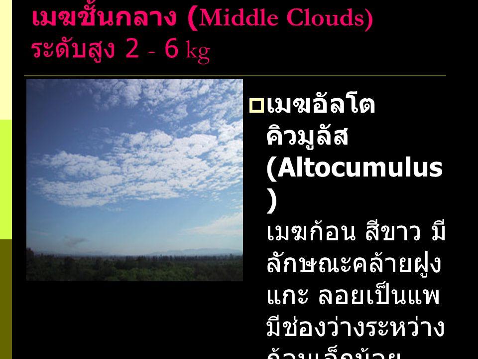 เมฆชั้นกลาง (Middle Clouds) ระดับสูง 2 - 6 kg