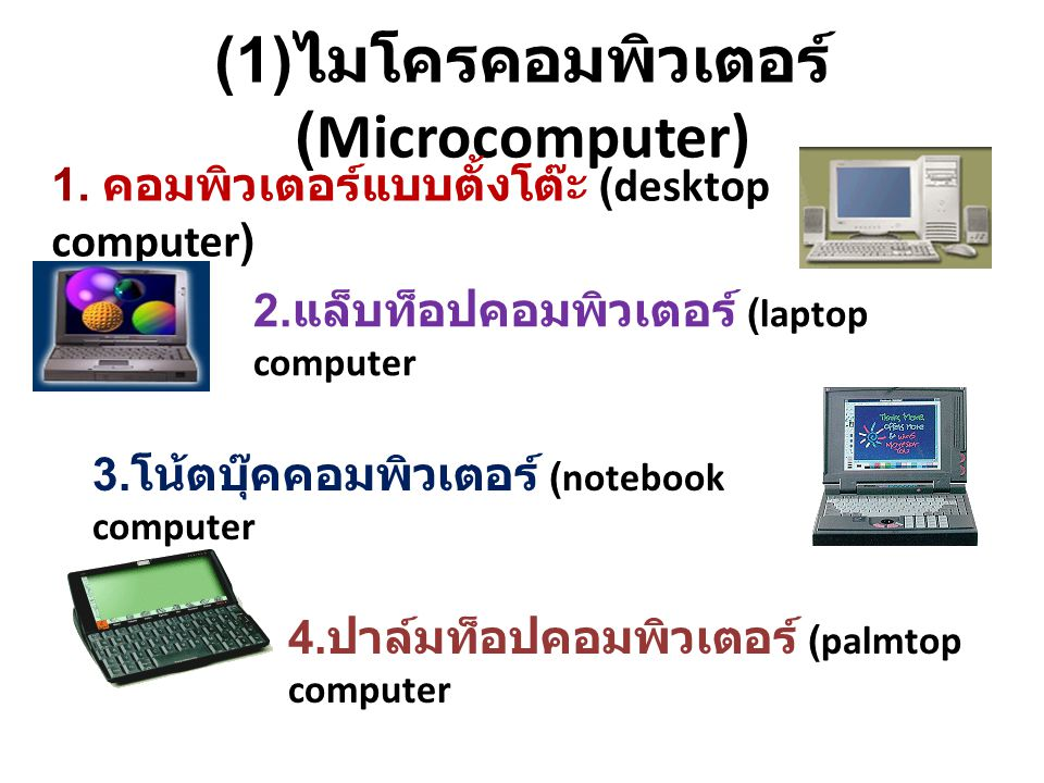 (1)ไมโครคอมพิวเตอร์ (Microcomputer)