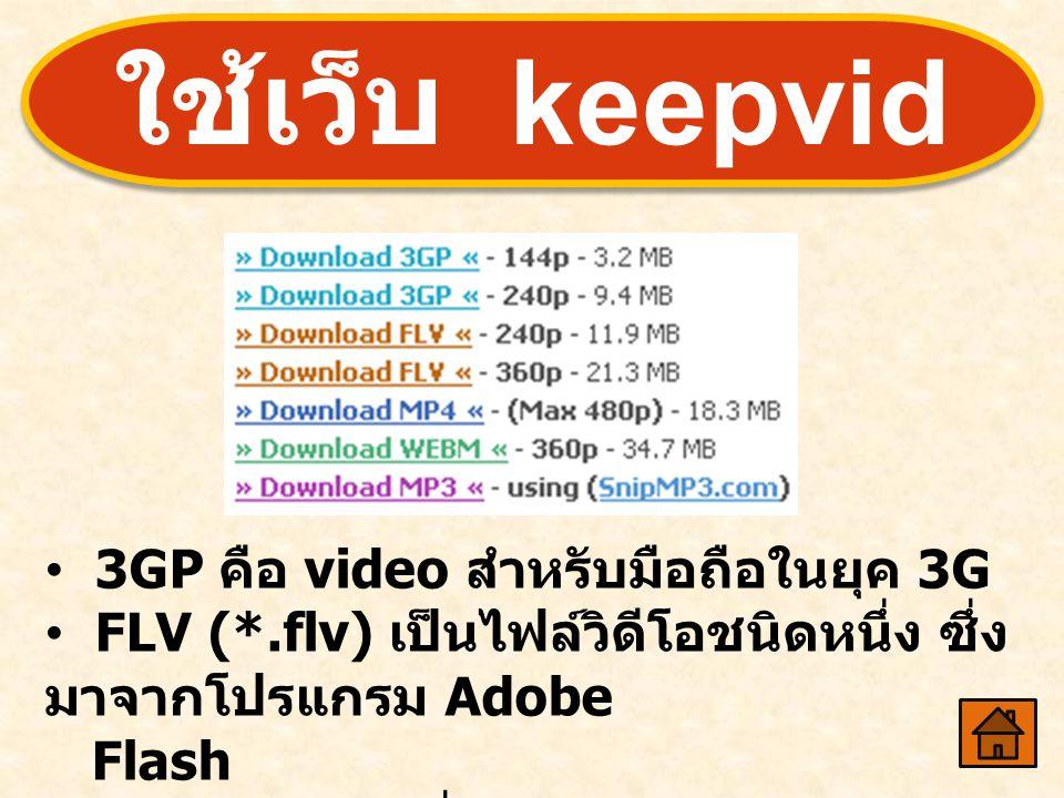 ใช้เว็บ keepvid 3GP คือ video สำหรับมือถือในยุค 3G