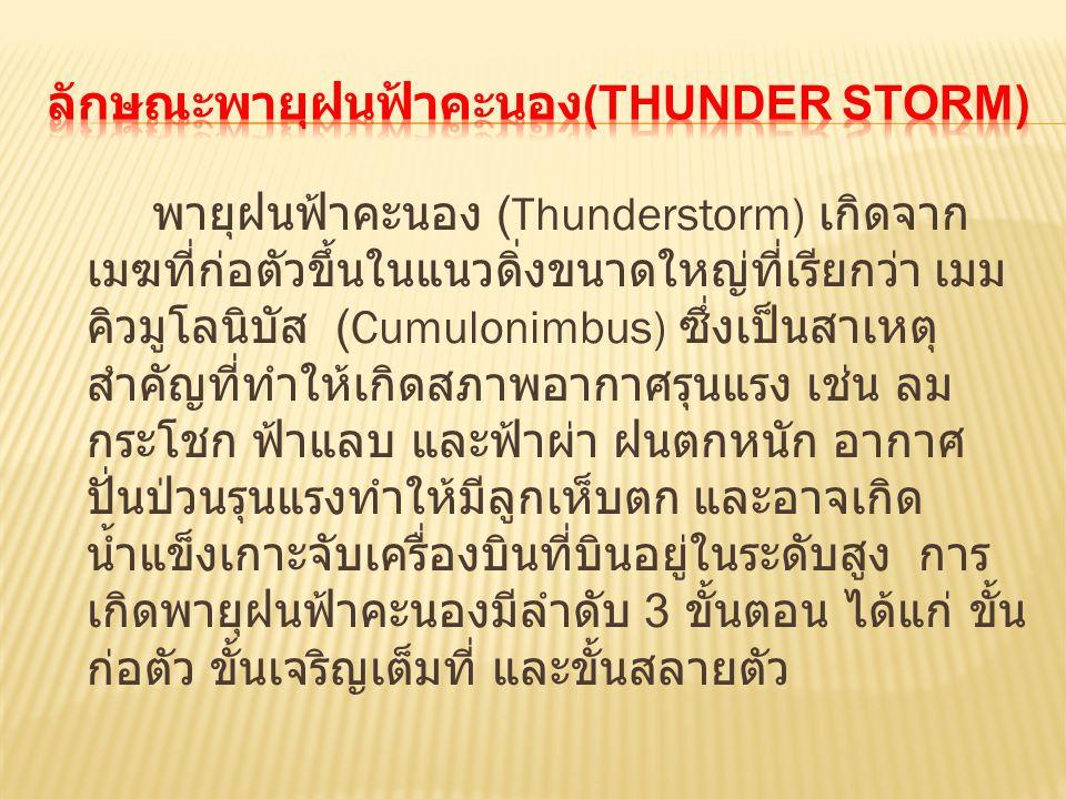 ลักษณะพายุฝนฟ้าคะนอง(Thunder storm)