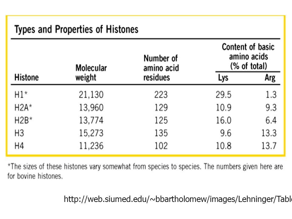 http://web. siumed. edu/~bbartholomew/images/Lehninger/Table%2024-03