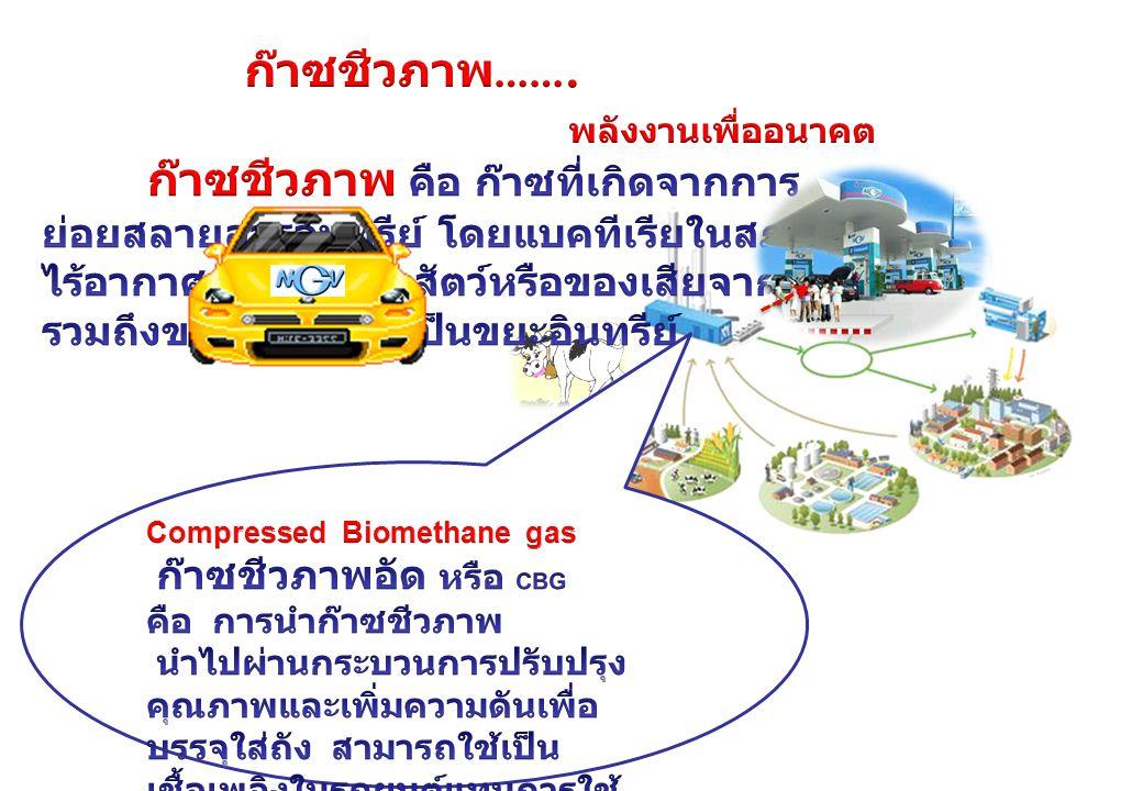 ก๊าซชีวภาพ คือ ก๊าซที่เกิดจากการ