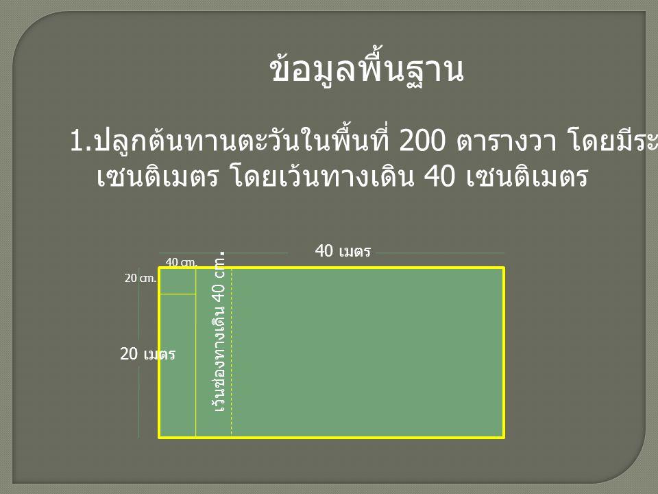 ข้อมูลพื้นฐาน 1.ปลูกต้นทานตะวันในพื้นที่ 200 ตารางวา โดยมีระยะปลูก 40x20. เซนติเมตร โดยเว้นทางเดิน 40 เซนติเมตร.