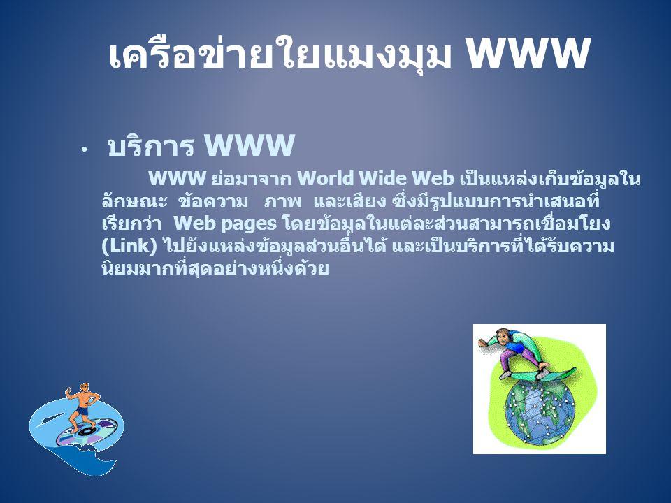 เครือข่ายใยแมงมุม WWW