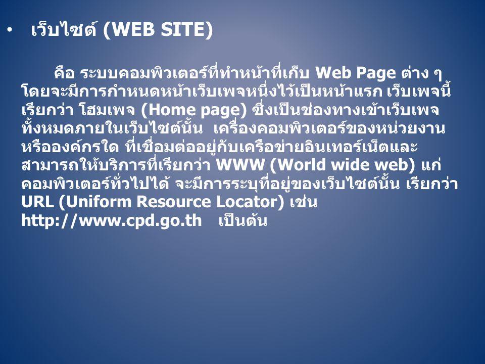 เว็บไซต์ (Web site)