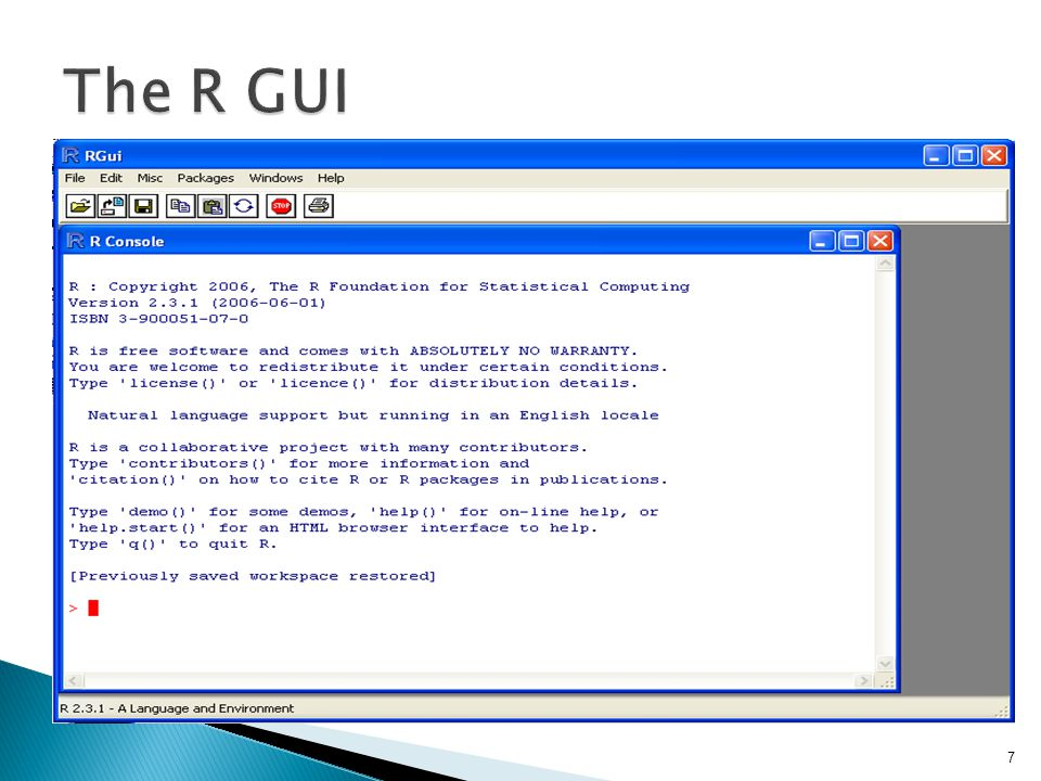 The R GUI