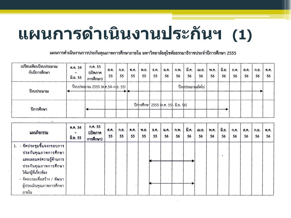 แผนการดำเนินงานประกันฯ (1)