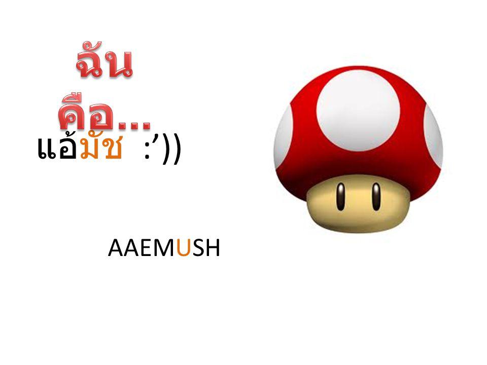 ฉันคือ... แอ้มัช :')) AAEMUSH