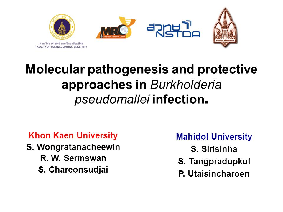 Molecular pathogenesis and protective approaches in Burkholderia pseudomallei infection.