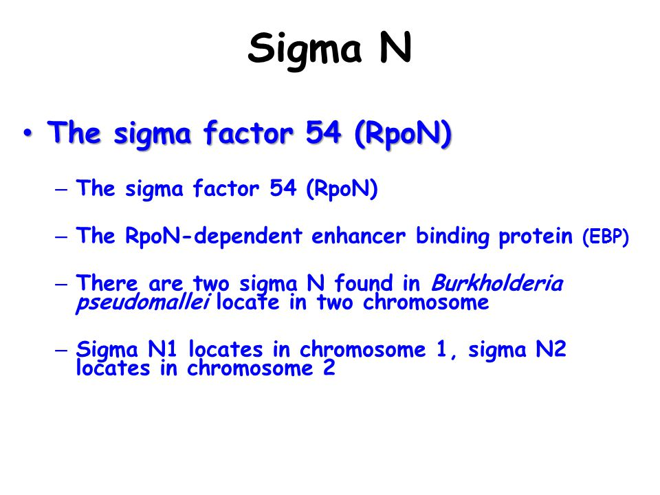 Sigma N The sigma factor 54 (RpoN)