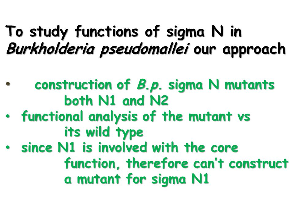 To study functions of sigma N in