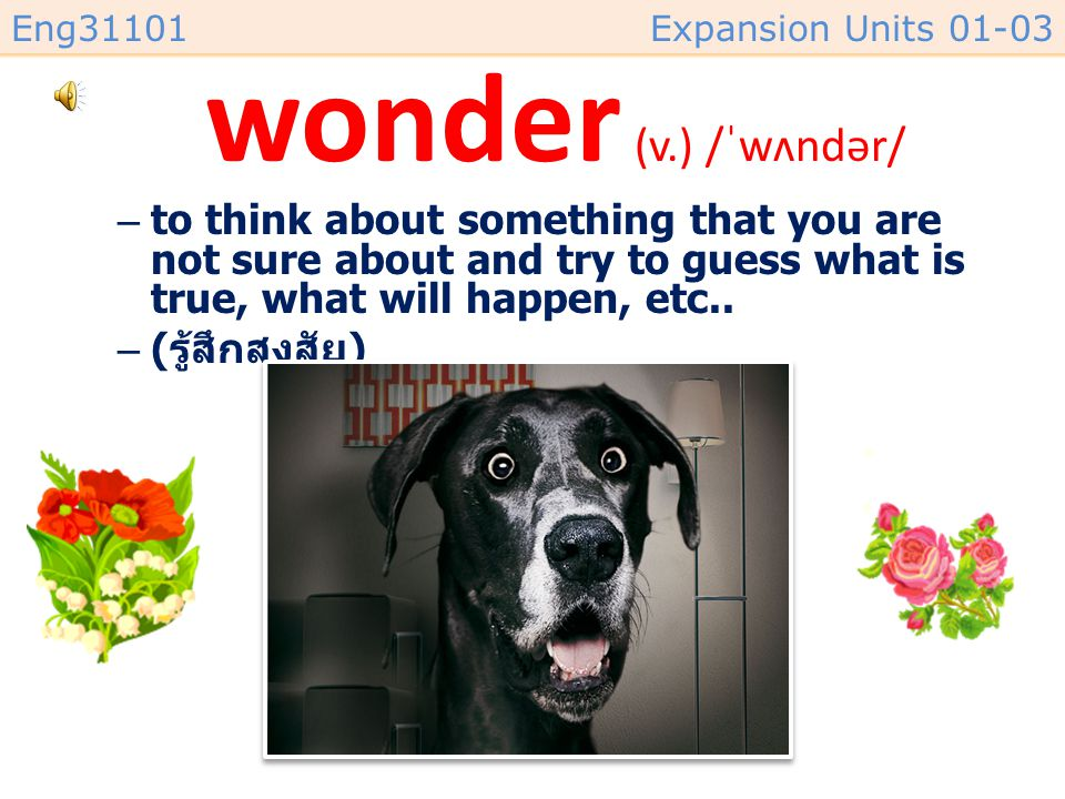 wonder (v.) /ˈwʌndər/ to think about something that you are not sure about and try to guess what is true, what will happen, etc..
