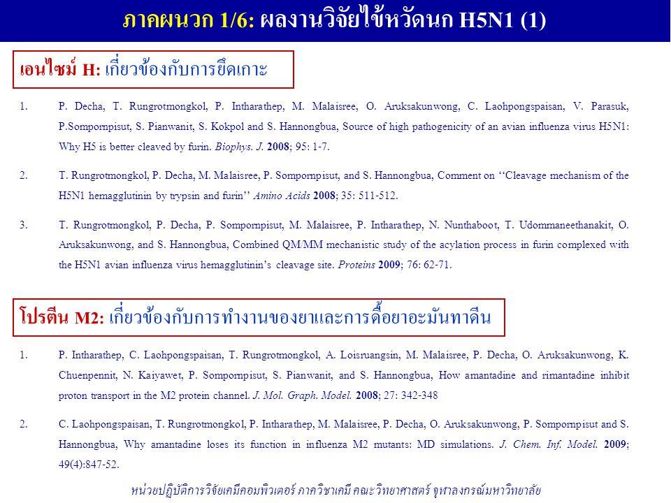 ภาคผนวก 1/6: ผลงานวิจัยไข้หวัดนก H5N1 (1)