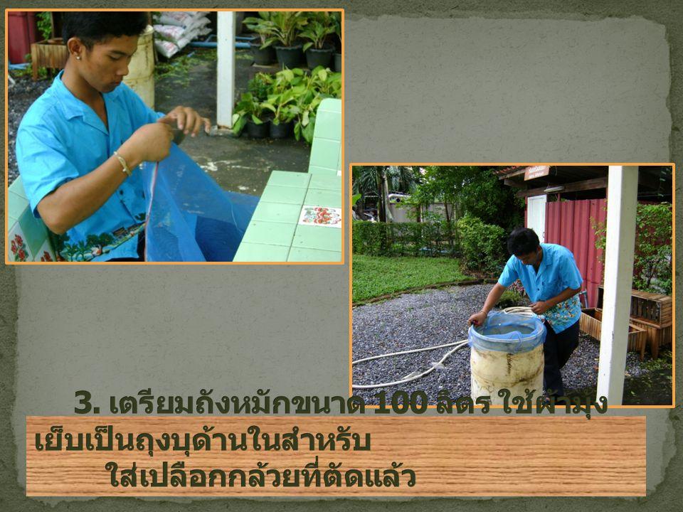 3. เตรียมถังหมักขนาด 100 ลิตร ใช้ผ้ามุ้งเย็บเป็นถุงบุด้านในสำหรับ