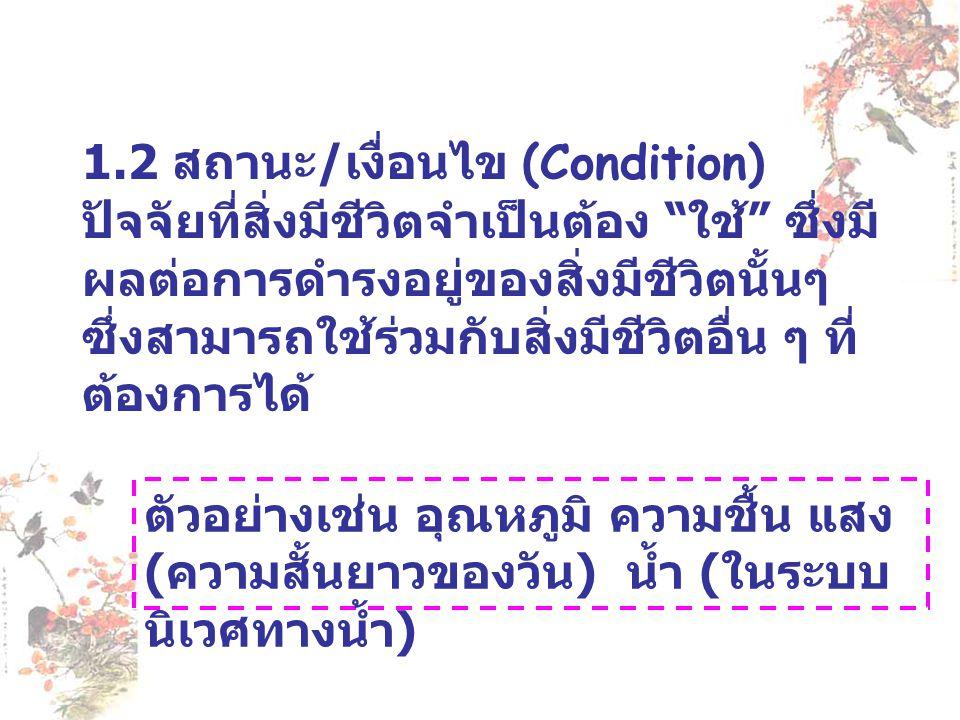1.2 สถานะ/เงื่อนไข (Condition)
