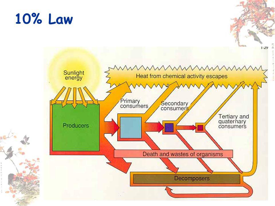 10% Law