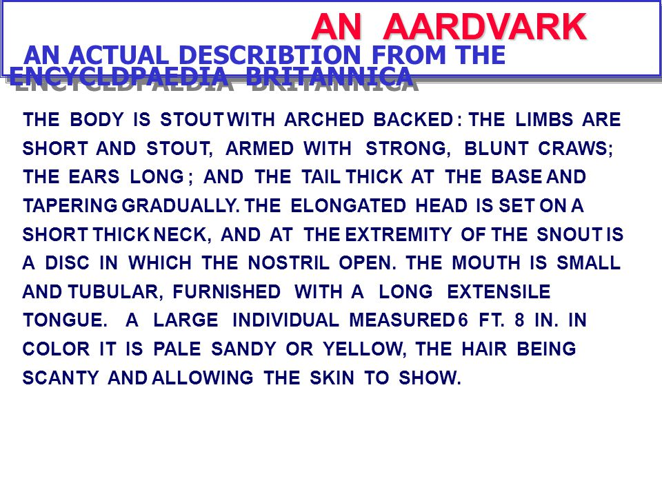 AN AARDVARK AN ACTUAL DESCRIBTION FROM THE ENCYCLDPAEDIA BRITANNICA