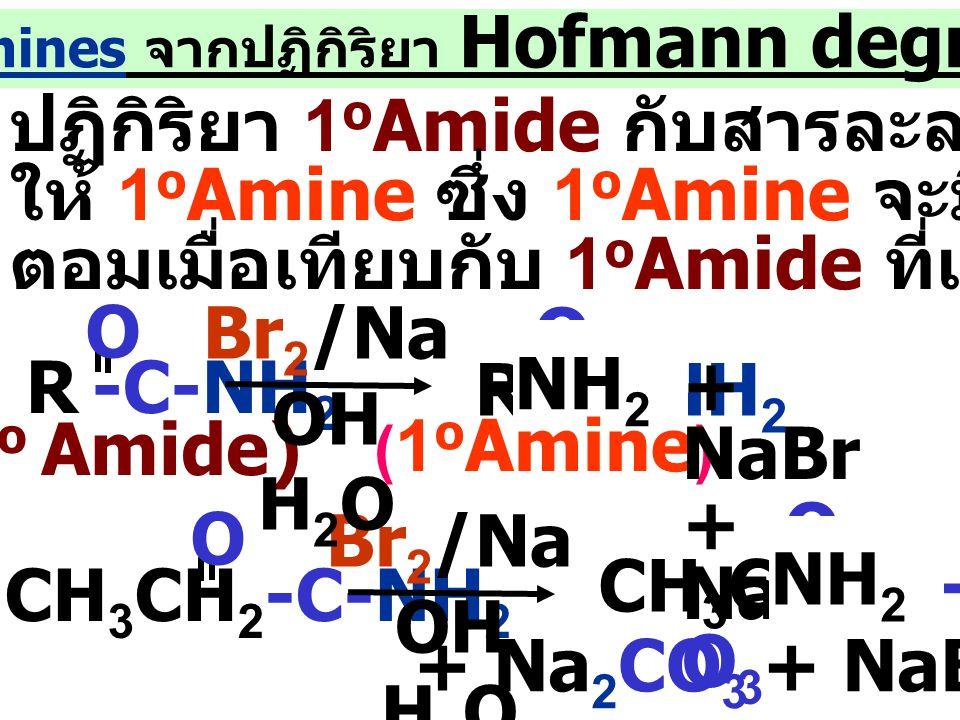 4.เตรียม Amines จากปฏิกิริยา Hofmann degradation