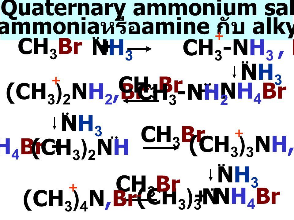 เตรียม Quaternary ammonium salts จาก