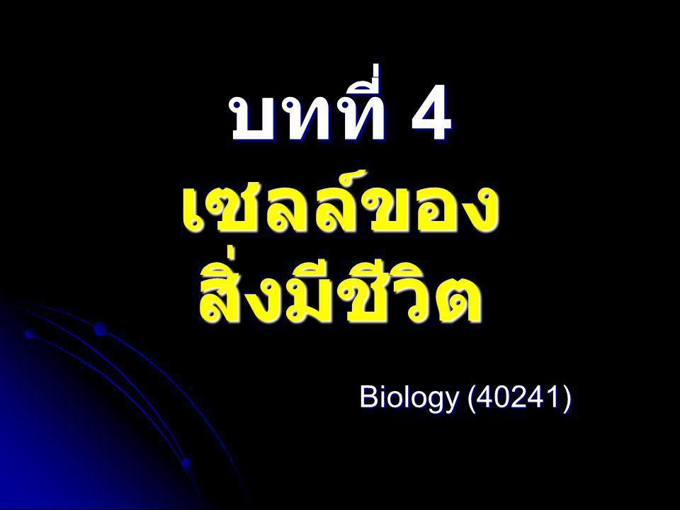 บทที่ 4 เซลล์ของสิ่งมีชีวิต