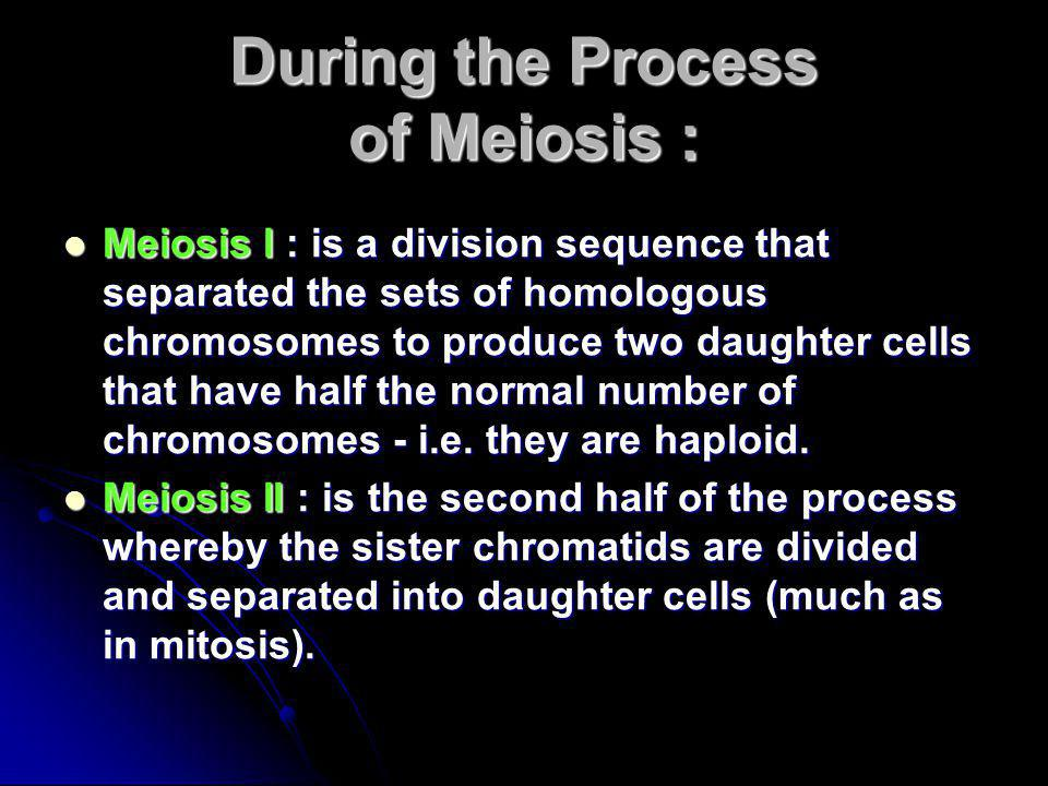 During the Process of Meiosis :