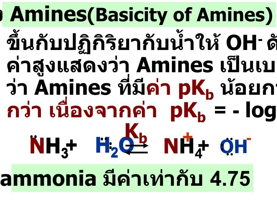 ความเป็นเบสของ Amines(Basicity of Amines)