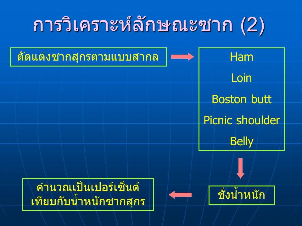 การวิเคราะห์ลักษณะซาก (2)