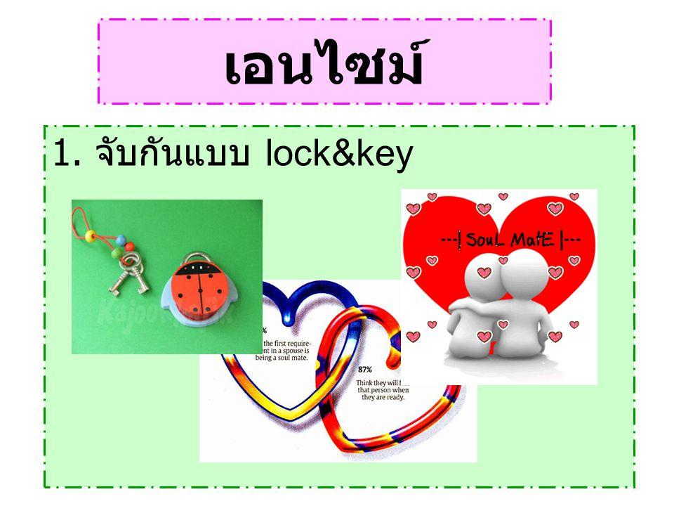 เอนไซม์ 1. จับกันแบบ lock&key
